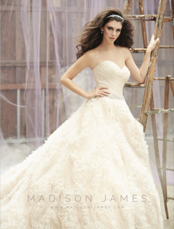 Madison James Style MJ120