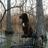 /assets/1577/160_bd_woods_dog.jpg