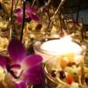 /assets/1790/salad_orchids.png