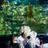 /assets/2240/wedding06.jpg