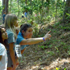 Campers spend time on a nature hike.