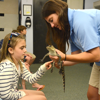 Campers interact with live animals.
