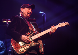 James Burton is a member of the Rock and Roll Hall of Fame.