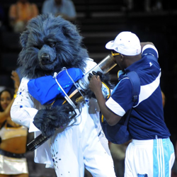 """The Memphis Grizz send t-shirts into the crowd with their """"Blue Suede Shooter."""""""
