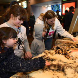 Girl scouts explore the different types of wildlife during the 2014 Scouts Rock at Graceland.
