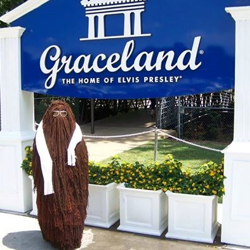 Cousin Itt stopped by Graceland before The Adams Family performance at Lohrey Stage in Memphis.