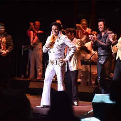 Twenty Elvis Tribute Artists competed in the Ultimate Elvis Tribute Artist Contest, and Dwight Icenhower was named the winner.