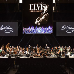 Fans from around the world celebrated Elvis