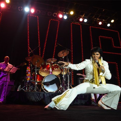 ETAs from around the world competed in the Ultimate Elvis Tribute Artist Contest.
