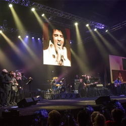 Fans loved seeing Elvis on the big screen at the Elvis Live in Concert show.