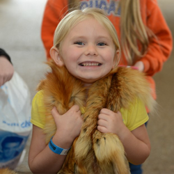 This Girl Scout got up close and personal with an animal pelt.