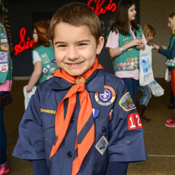 Scouts earned achievements toward ranks and badge requirements.