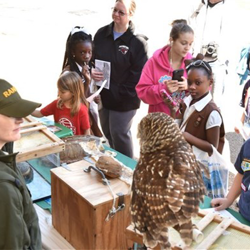 Tennessee State Parks showed off a few animals at Scouts Rock at Graceland.