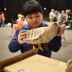 Scouts had the chance to get up close and personal with fossils, gemstones and more.