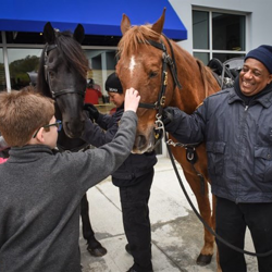 Scouts met the horses of the Memphis Police Department