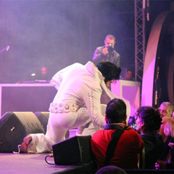 Fans enjoy the ETA competition in Malta at Celebrating Elvis.