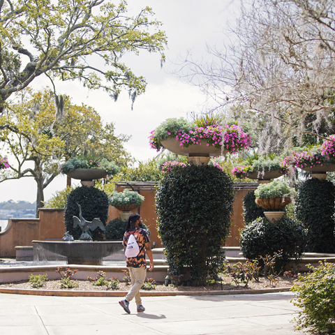 Gardens at Trout River Plaza - Photo by cre8jax