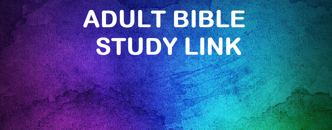 Adult BIble Study Link