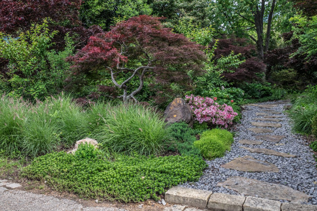 Asian Garden Design saveemail marpa design studio Previous To Being The Asian Garden This Space Was Officially The Maple Grove It Was Deemed The Maple Grove When The Late Nurseryman Plato Touliatous