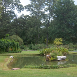 The Butterfly Garden is a destination not to be missed during a walk around the Garden.