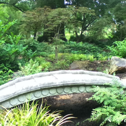 The Asian Garden is a serene stop on a walk around the Garden.