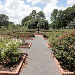 The traditional, symmetrical Rose Garden features a new fountain and central water feature.