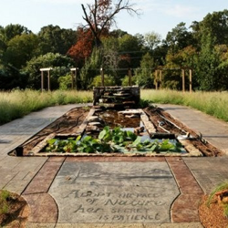 The Nature Photography Garden boasts an artistic water feature.