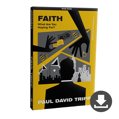 Store: Faith Bible Study (PDF Digital Study Guide)