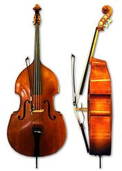 String bass or Upright bass
