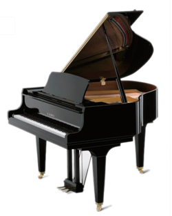 GM Series Piano