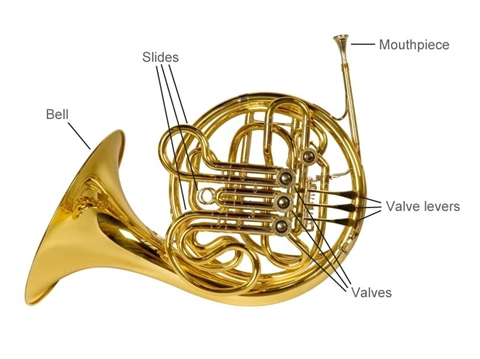 French horn parts | Amro Music, Memphis