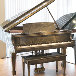 Steinway Model M 2004 Marbleized Grand Piano - SOLD