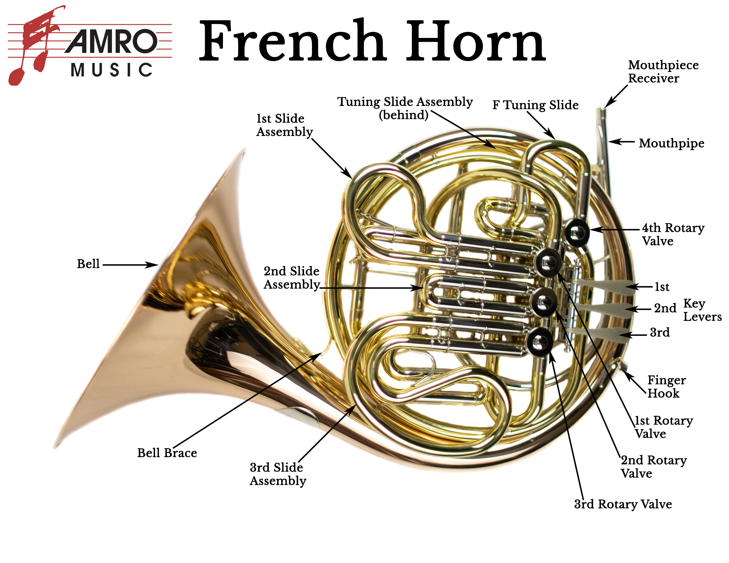 Diagram of French Horn Parts