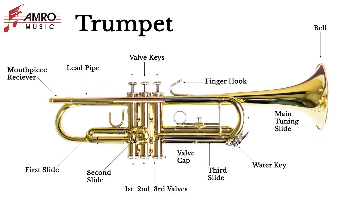 Trumpet Diagram