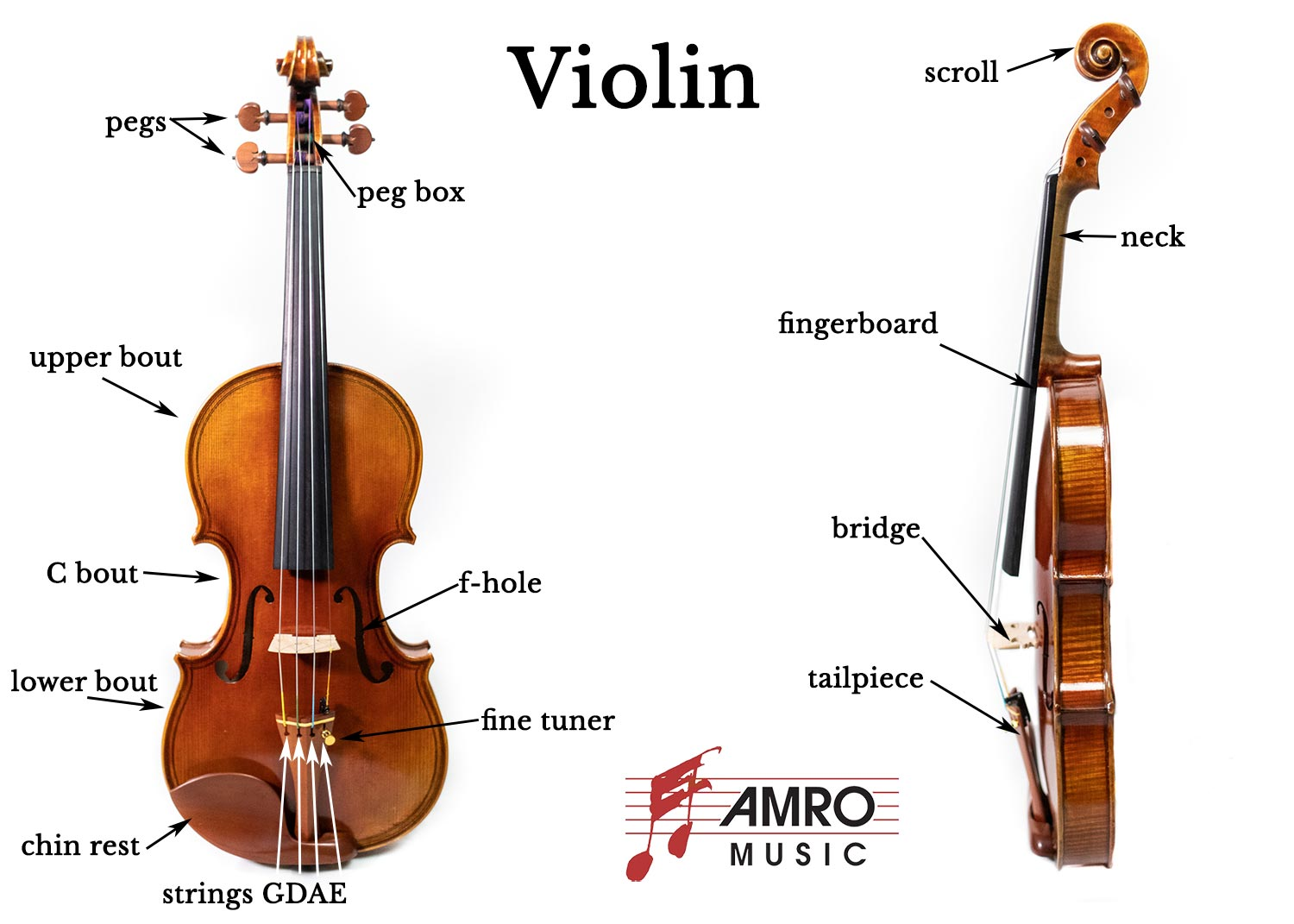 This illustration shows a violin from the front view on the left. It shows a side view in the center. A bow is illustrated on the right side of the image. On the front view of the violin, the scroll, peg, and chin rest are labeled. On the side view, the neck, top, bridge, tail piece, and end pin are labeled. On the bow illustration, the adjustment screw, frog, hair, and bow tip are labeled