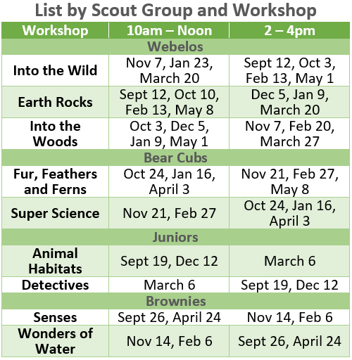 Scout Workshops by Type