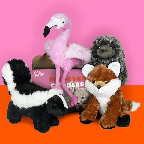 Fort Worth Zoo Valentine's adoption box with stuff animals