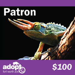 Fort Worth Zoo Patron Adoption Logo