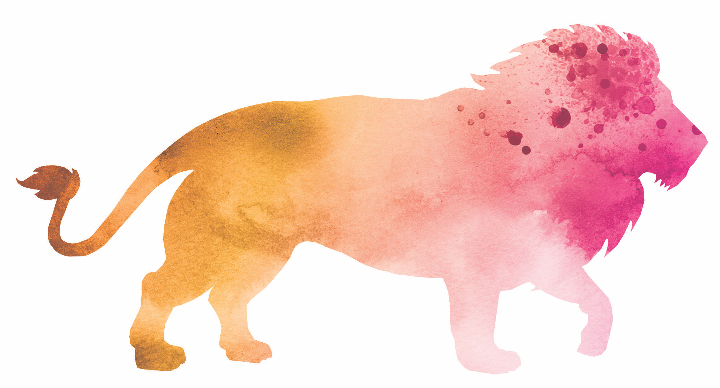 watercolor lion graphic for Fort Worth Zoo's A Wilder Vision campaign