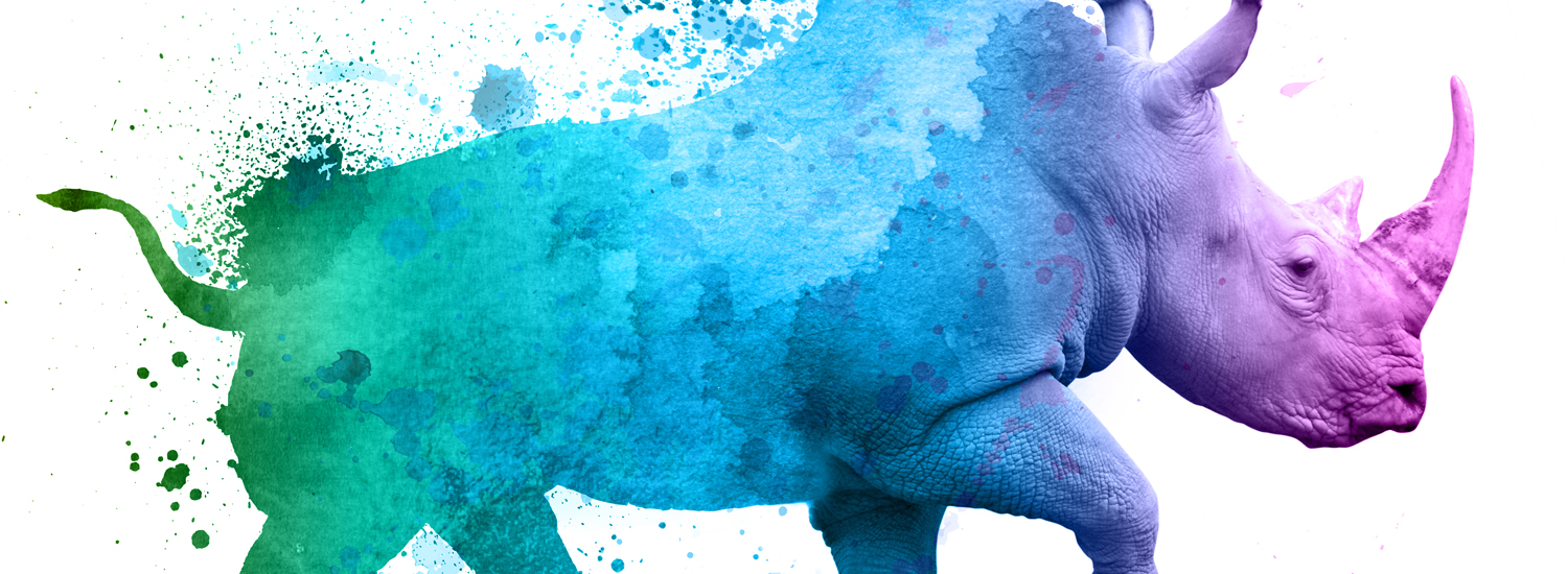 rhino watercolor graphic for Fort Worth Zoo's A Wilder Vision campaign