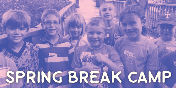 Spring Break Camp image