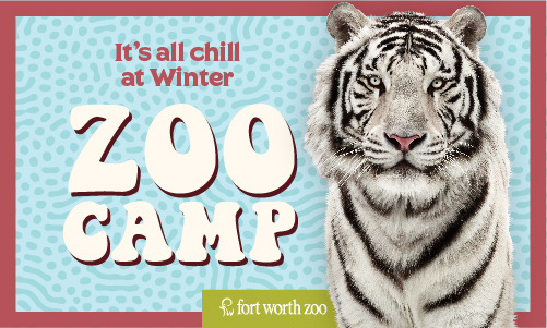 Winter Zoo Camp - Home for the Holidays! image