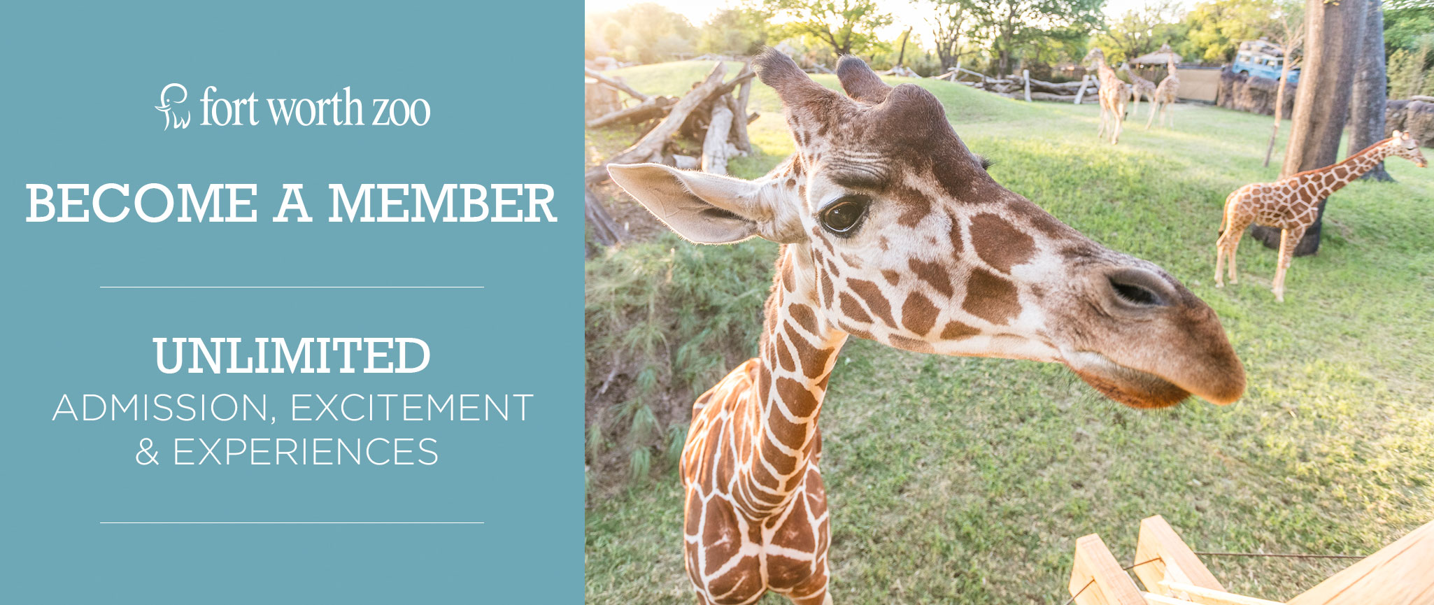 Fort Worth Zoo membership