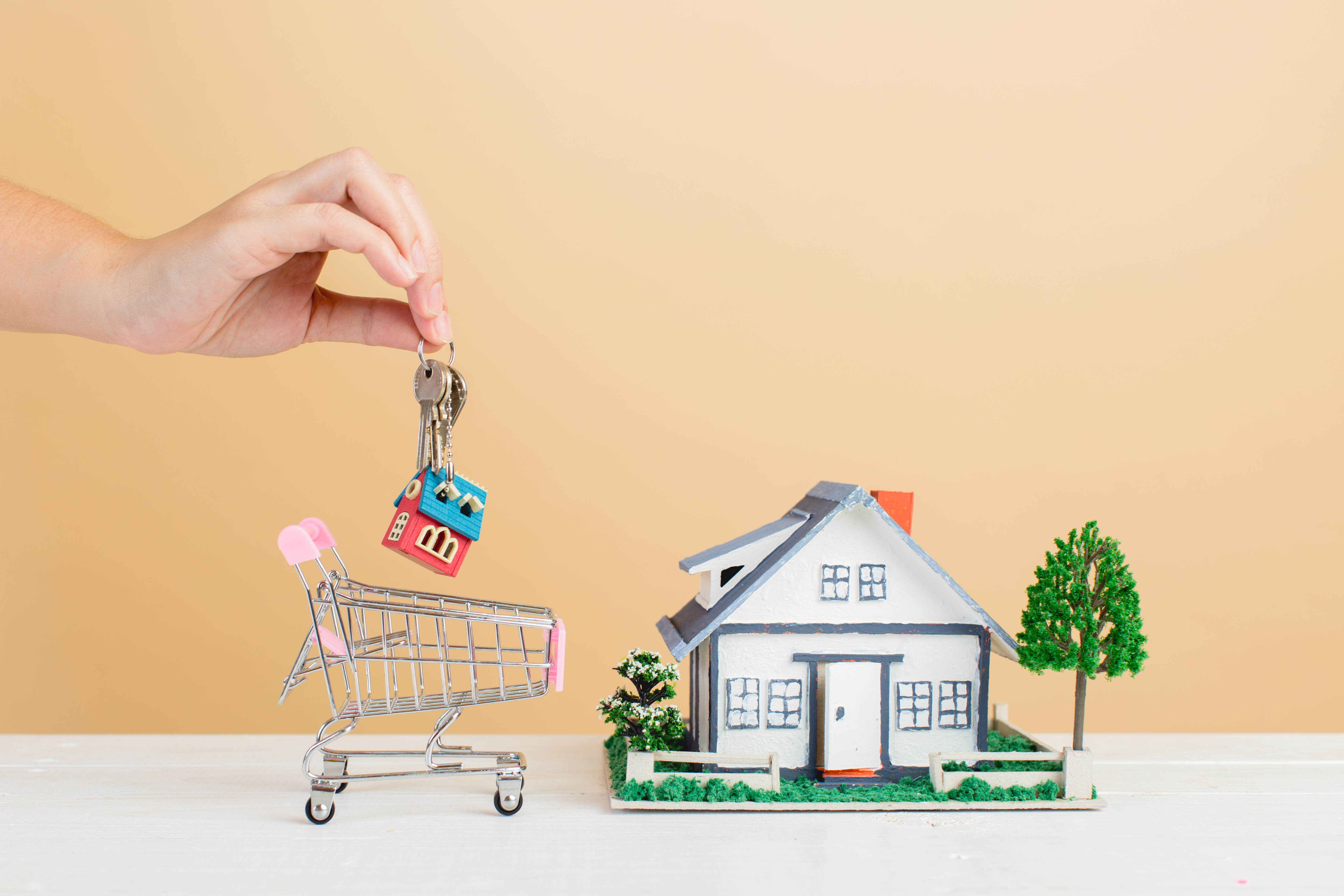 scale house with a shopping cart and keys