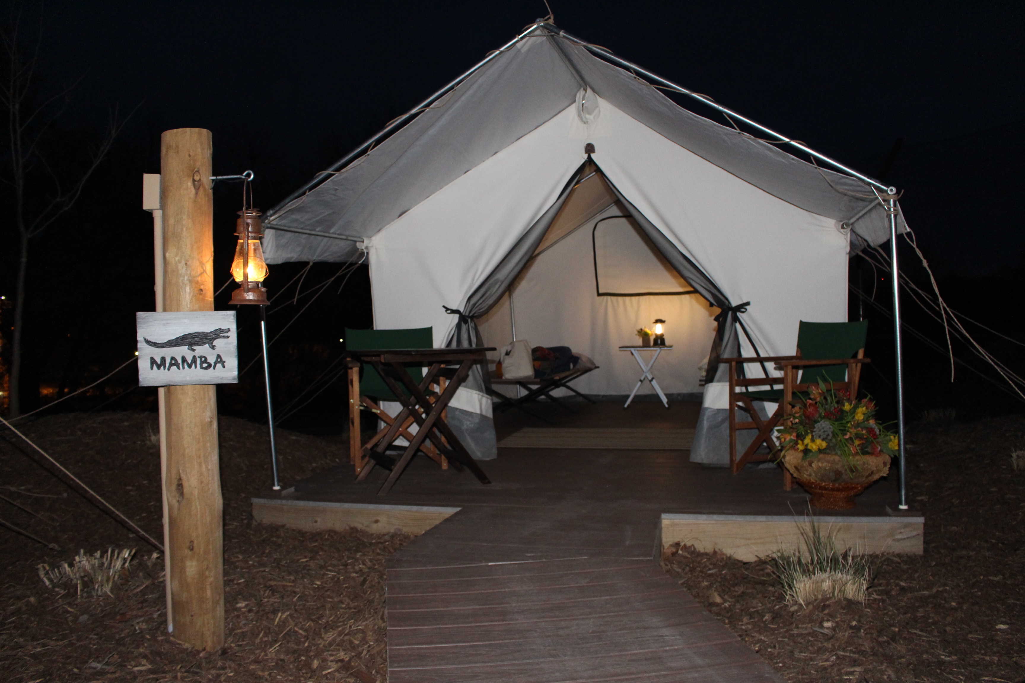 Join Us For An Overnight Program Where Guests Spend The Night At Zoo S Safari Tent Camp Site And Experience Exhibits After Hours