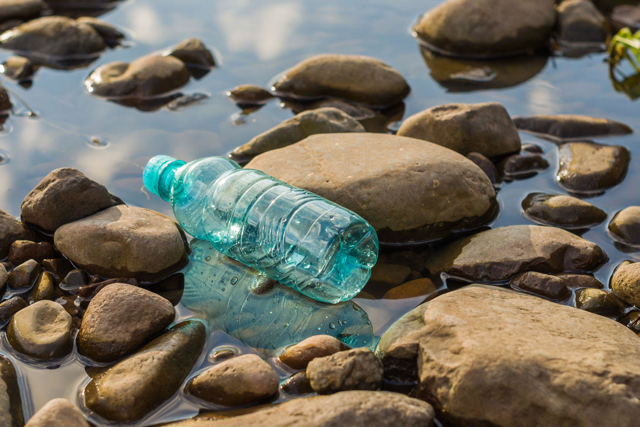 plastic bottle in a rocky pond