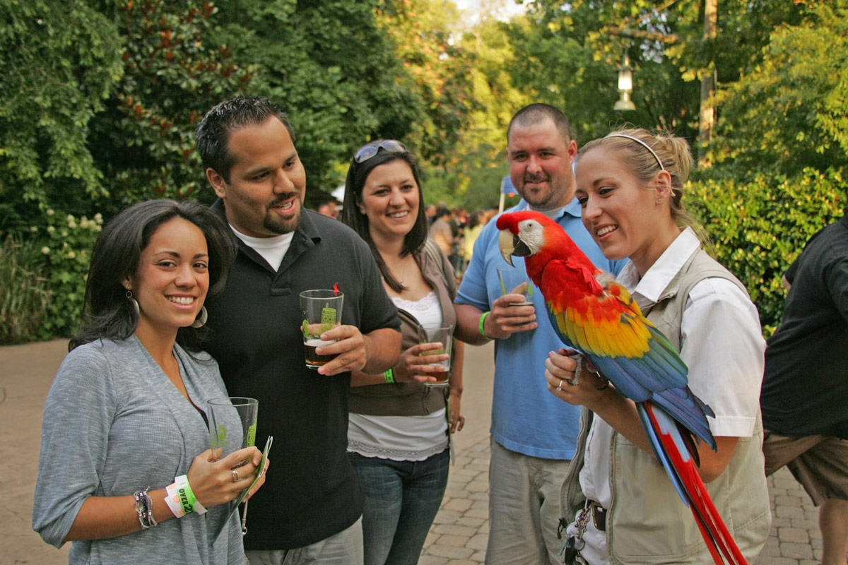 Image result for Brew at the Zoo