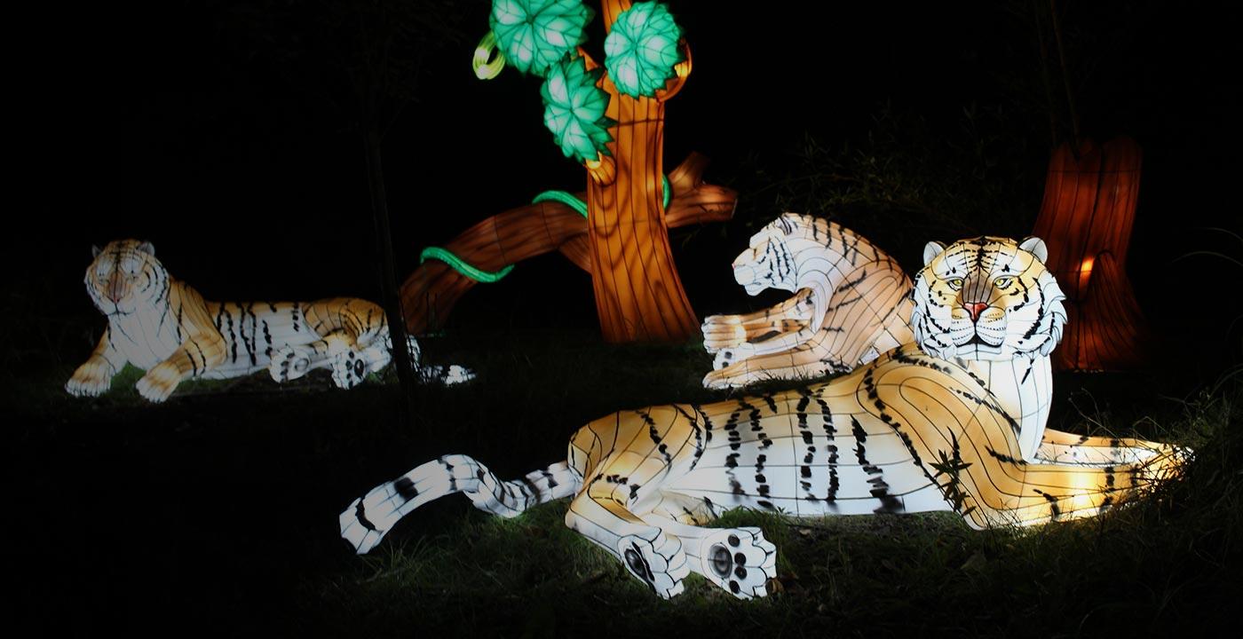 Glowing tiger lantern