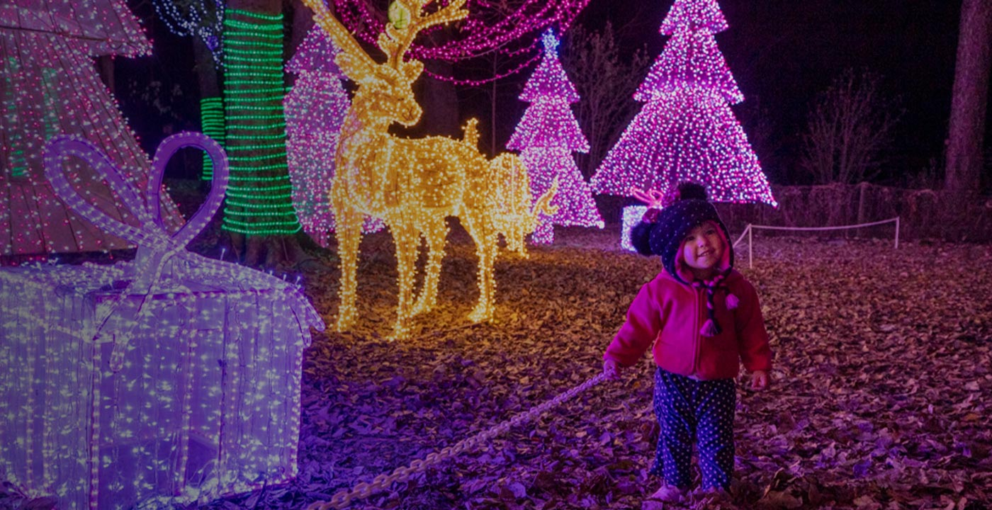 Child with holiday lights