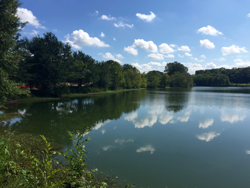 This 20 acre lake is just one of the features along the trail at Epping Way. The trail will hug the shoreline of the lake offering a beautiful scenic ride or walk for trail users.